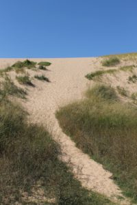 a path in a sand dune