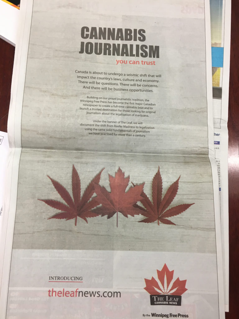 an ad from the Winnipeg newspaper about its marijuana website