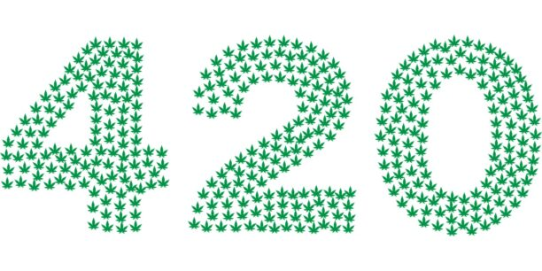 a graphic of marijuana leaves that form 420 for a blog about 420 and its meaning